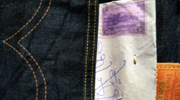 Pocket Detail