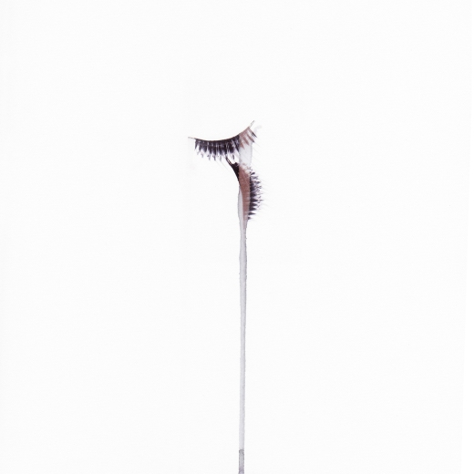 John J. Carlano Untitled (Eyelashes) from Fallout considerations 2104
